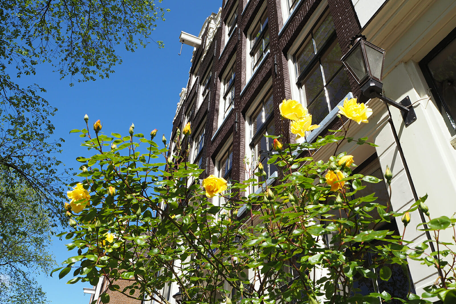 Driekamer appartement in hartje Amsterdam beschikbaar HouseHunter